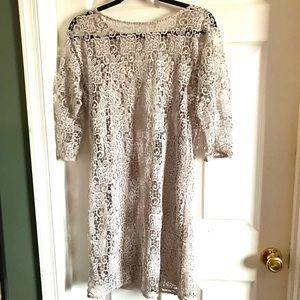 Zara woman tan lace 3/4 sleeve sheaf dress